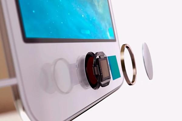 Кнопка на экране iPhone не работает что делать