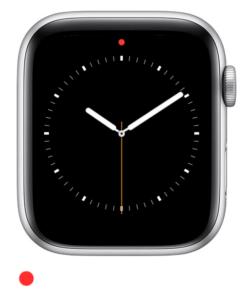 Красная точка на Эпл Вотч